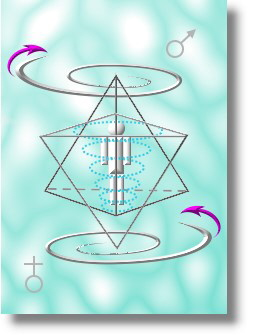 Veiled Square & Hidden Compasses | FmI - Masonic Traveler